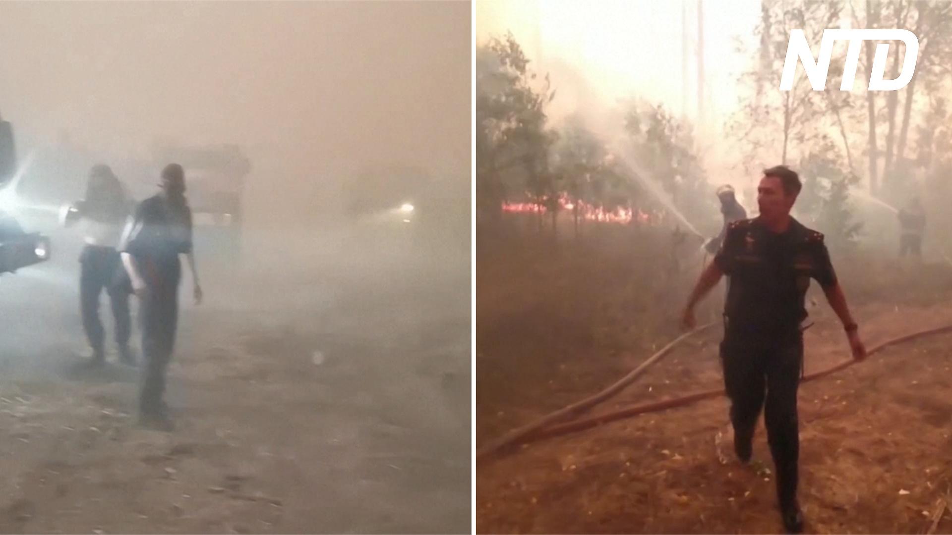 Полсотни пожарных спаслись из огненного кольца в мордовском заповеднике