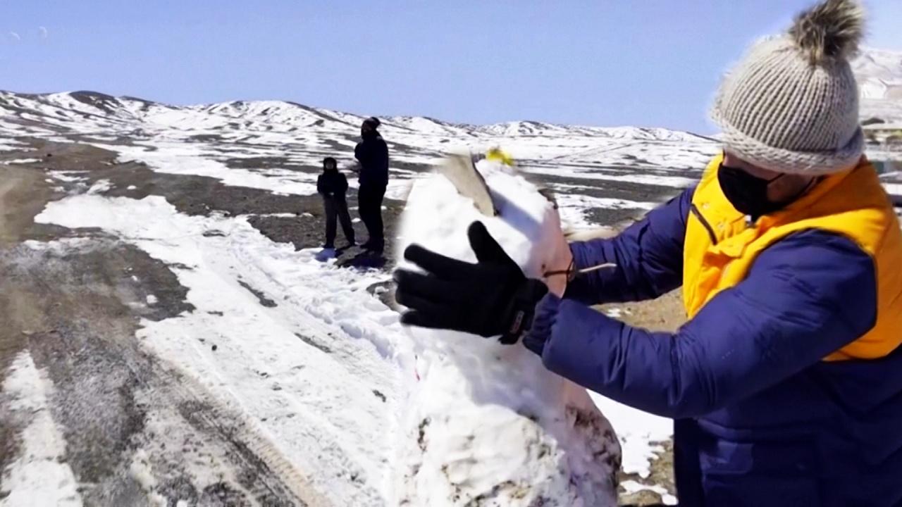Снег в пустыне: чилийцы радуются редкому явлению