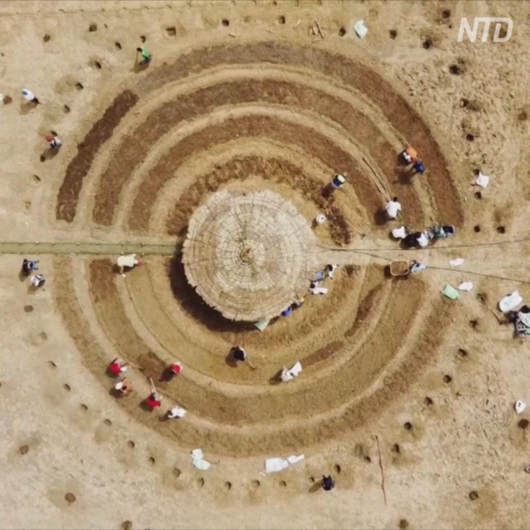 Как круглые сады остановят Сахару