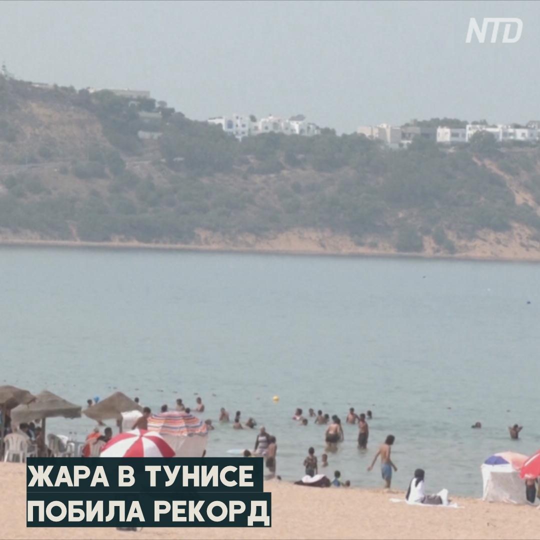 Тунис плавится: жара побила рекорд