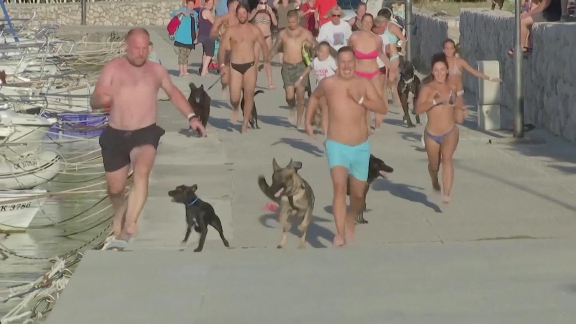 «Собакотлон»: как соревновались собаки и их хозяева на пляже в Хорватии