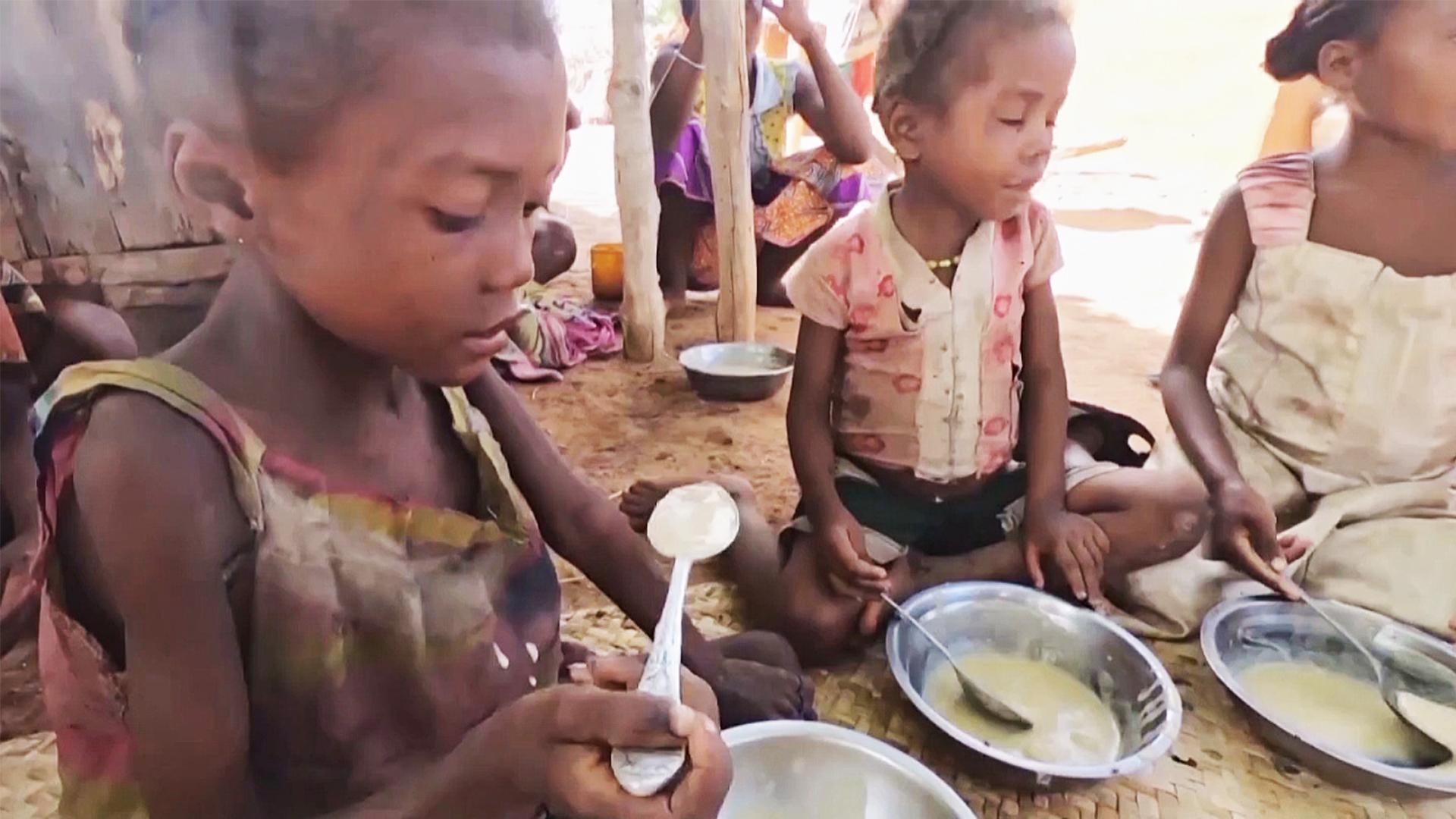 Засуха, песчаные бури и вредители: миллион мадагаскарцев – на грани голода