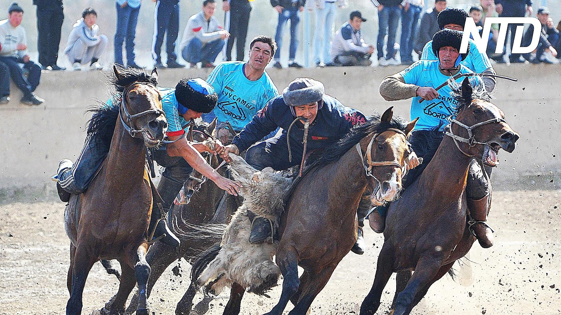Охота с беркутом и собачьи бега: фестиваль игр кочевников в Кыргызстане