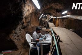 Сокровища жрецов: под мексиканской пирамидой нашли древние артефакты