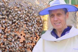 Тайная жизнь пчёл: секреты пасеки Алтая