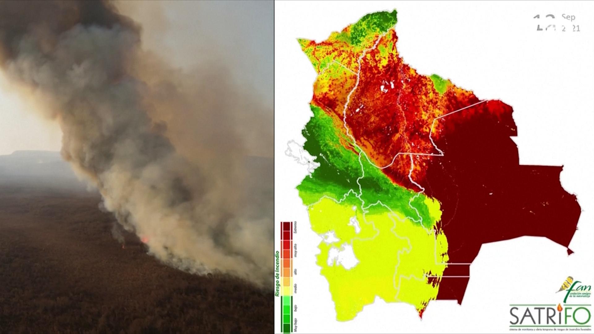 Лесные пожары в Боливии уничтожили 1,5 млн гектаров