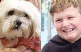 В Австралии дети помогают животным, оставшимся без хозяев
