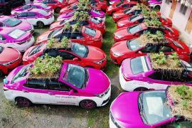 Огород на капоте: тайские таксисты сажают овощи прямо на машинах