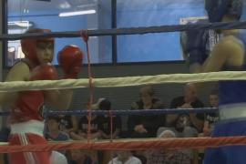 Бокс помогает воспитывать юных австралийцев