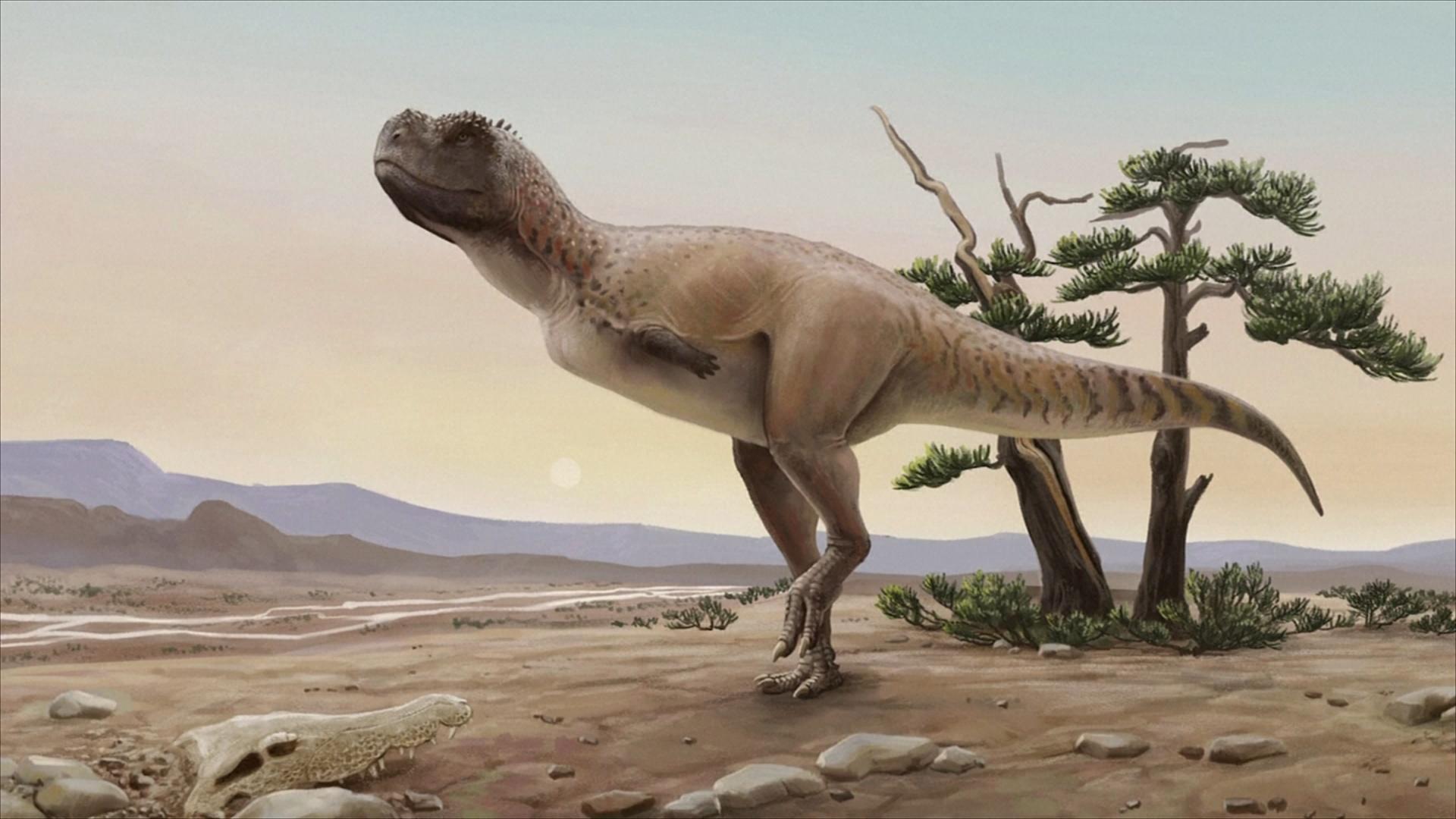 В Бразилии открыли новый вид динозавров, живший 70 млн лет назад