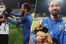 Зачем румынские футболисты выносят щенков на поле перед матчем