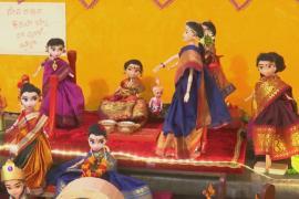 Индианка собрала 10 000 традиционных кукол и выставляет их раз в году