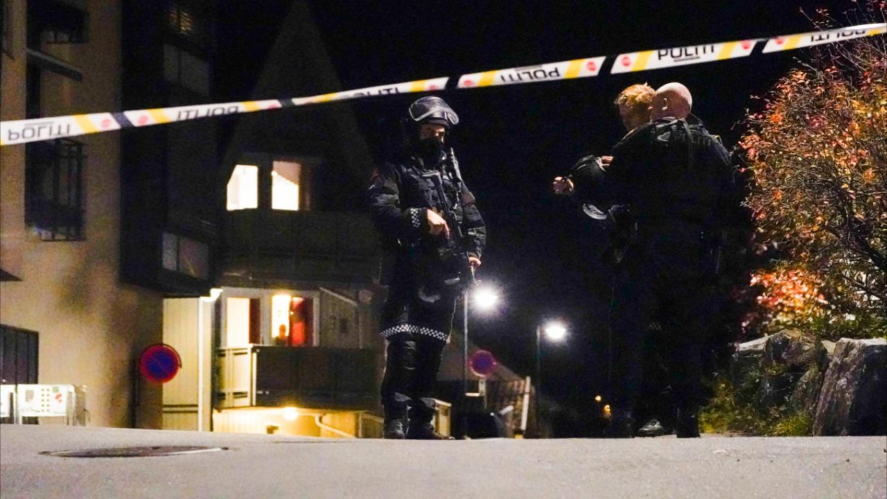 Массовое убийство в Норвегии: мужчина убил из лука пять человек