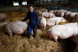 Владельцы британских свиноферм отчаянно просят выделить им рабочих-мигрантов