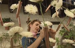 Цветочный фестиваль в Испании: море цветов и зеркала