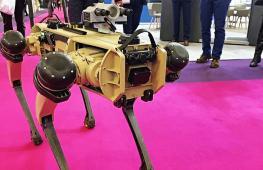 Не боится рисковать: робопса для полиции и военных показали на выставке под Парижем