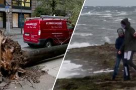 По Германии пронёсся шторм «Игнац»