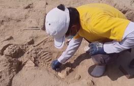 Перу нашли четыре древние могилы времён культуры уари