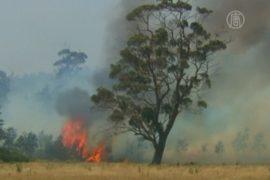 Тасмания в огне, 100 пропавших без вести