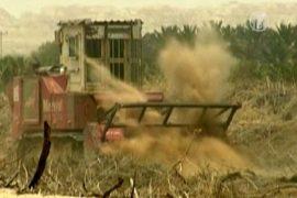 Израиль собирает урожай мин