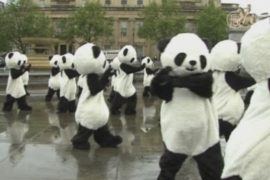 Десятки панд оккупировали центр Лондона