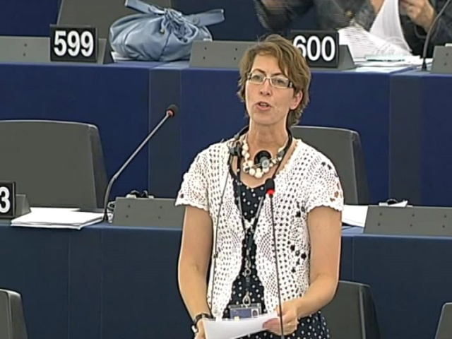 Закон об экстремизме в РФ беспокоит Европарламент