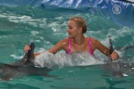 Дельфины научат танцевать московскую Русалочку