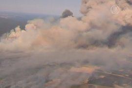 В Австралии горит буш