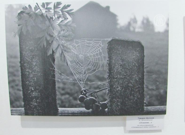 Бродского вспоминают в музее Ахматовой