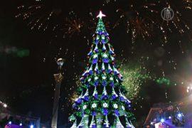 В Украине зажгли главную новогоднюю елку
