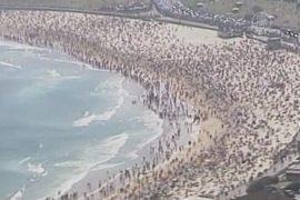 Акула напугала отдыхающих в первый день 2013 года