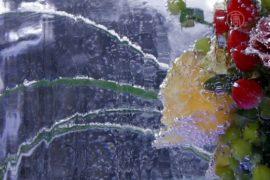 Выставка ледяных цветов открылась в Киеве