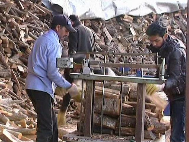 Обедневшие греки рубят лес на дрова