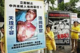 «Мир ахнет, узнав масштабы изъятия органов в КНР!»