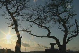 В пострадавших от цунами городах видят привидений