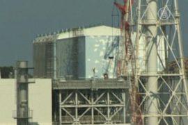 В аварии на «Фукусиме-1» виновата крыса
