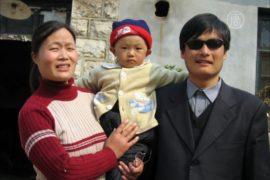 Запугивание и месть: семья адвоката живёт в страхе