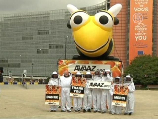 Европа решила защитить пчёл