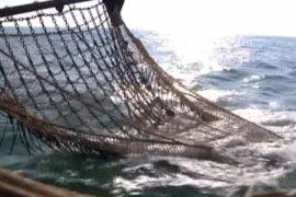 ЕС намерен восстановить свои рыбные запасы