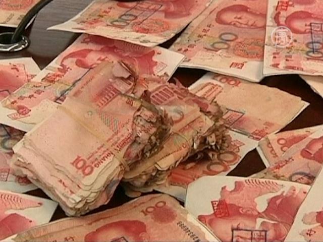 Термиты съели более 400 тысяч юаней