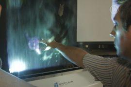 Воздушный дисплей представили в Киеве