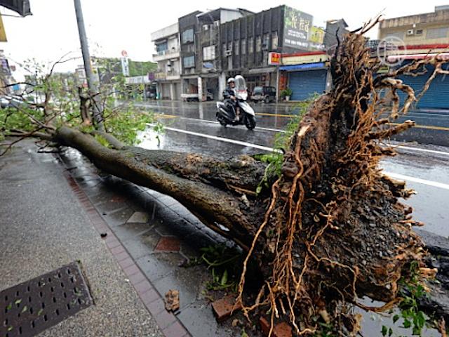 Тайфун «Соулик» движется на Приморский край