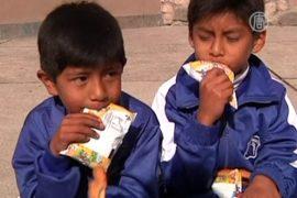Боливийцев приучают пить молоко вместо пива