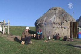 Летние выпасы в Казахстане – традиции предков