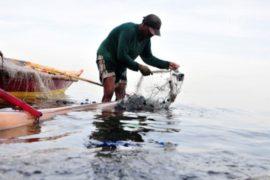 Рыбаки Испании недовольны действиями Гибралтара
