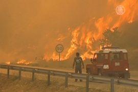 В Португалии продолжают гореть леса