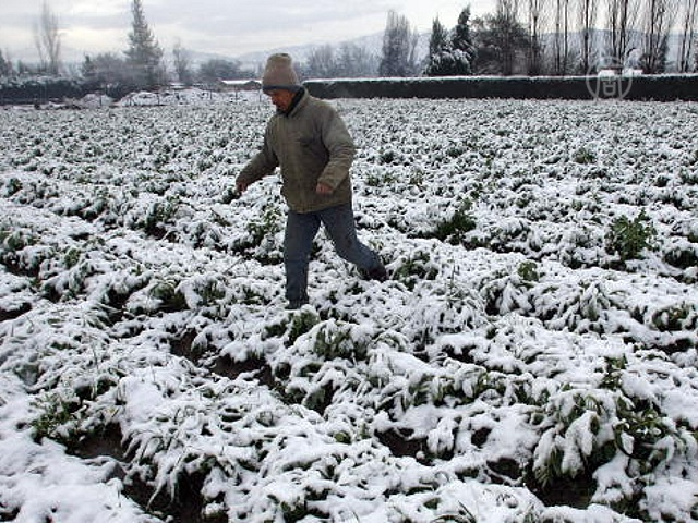 В Мексике – ураган, в Чили – снег