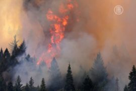 В США горит национальный парк Йосемити