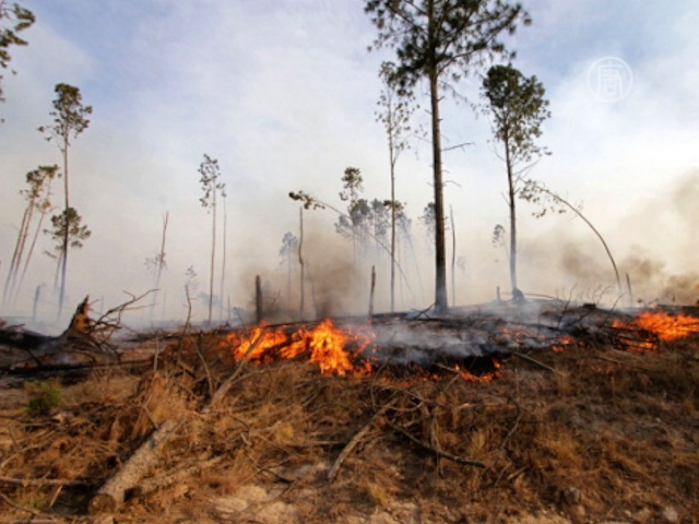 Аргентина: пожары уничтожают дома