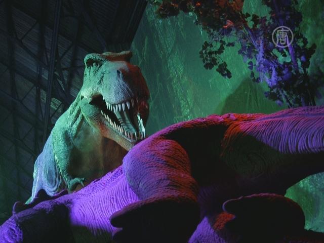 Уникальных динозавров привезли в Киев